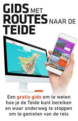 banner-blog-guia-rutas-nl